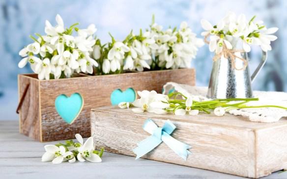 wooden-box-snowdrops-white-birch-flowers-photo-wallpaper